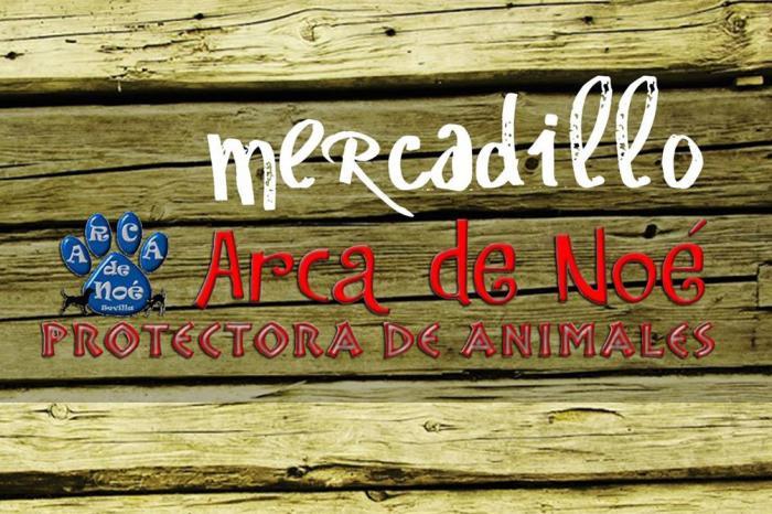 Mercadillo Arca de Noé Sevilla